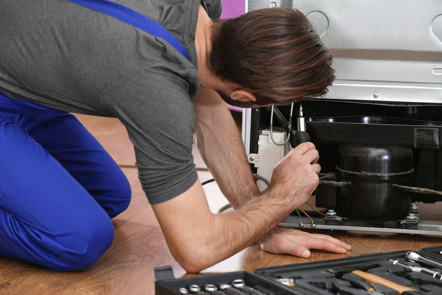 professional home appliance repair service